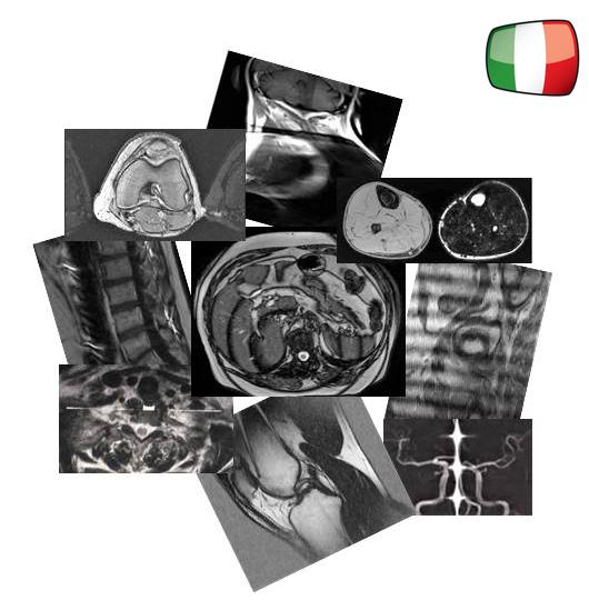 Artefatti e Soluzioni Tecniche nella Diagnostica Per Immagini RM - Sezione online del libro